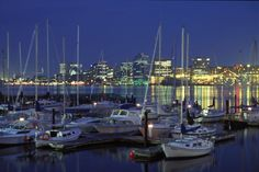Halifax Harbour at night. Live, learn and play in Lunenburg, Nova Scotia, Canada. Learn english in Canada. Halifax Waterfront, Halifax Canada, O Canada, Alberta Canada, Canada Travel, Nova Scotia, National Geographic Travel, Destinations
