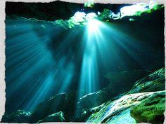 8 razones por las que debes bucear en la Riviera Maya