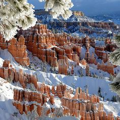 Bryce Canyon, AZ I have been here.  Want to go back.