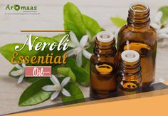 Get Relieves From Chronic Depression with the help of easily availbale at Neroli Essential Oil, Neroli Oil, Essential Oils, Hot Sauce Bottles, The Help, Pure Products, Essential Oil Blends