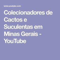 Colecionadores de Cactos e Suculentas em Minas Gerais - YouTube