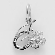 Good Luck Charm $17 https://www.charmnjewelry.com/sterling-silver-charms.htm #CharmBracelet