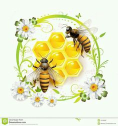 Bee Drawing, Bee Honeycomb, Honeycomb Tattoo, Free Vector Illustration, Bee Tattoo, Bee Art, Save The Bees, Bee Happy, Bees Knees