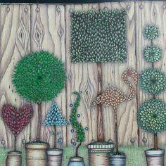 Secret Garden Coloring BookJohanna