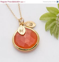 PRE HOLIDAY SALE  Carnelian Necklace  Personalized by delezhen