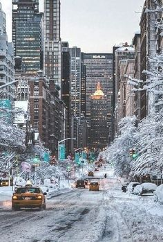 A New York Winter.