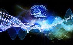 La ciencia y la tecnología van de la mano... Fish, Pets, Animals, Cabo, Chile, World, Tecnologia, Investigations, Diversity