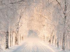 Somewhere in Finland. [1325x993]