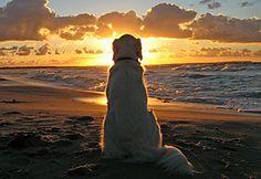Always enjoy a good sunset...