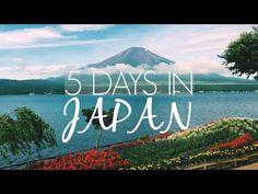 JAPAN: Tokyo, Harajuku, Shibuya, Fuji & Hakkone   Food + Travel Guide - YouTube