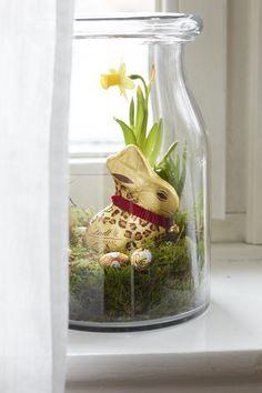 Der Goldhase Animal Print von Lindt & Sprüngli wird Ostern in diesen hübsch bepflanzten Gläsern verschnekt und bringt so ein bisschen Frühling und leckere Schokolade zu den Liebsten nach Haus!