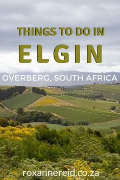 Stuff To Do, Things To Do, All About Africa, Slow Travel, Africa Travel, Virtual Tour, Hiking Trails, Cape Town, Outdoor Activities