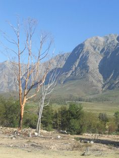 South Africa South Africa, Mountains, Country, Nature, Travel, Beautiful, Naturaleza, Viajes, Rural Area