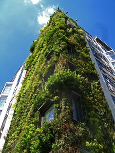Vertical Gardens Patrick Blanc Nobody is more familiar than Blanc with the secrets of the plants, from all over the world, that live on almost nothing, in the most unlikely situations, carpeting the...