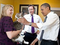 British Prime Minister David Cameron introduces President Barack Obama to Larry the cat Chief Mouser to the Cabinet Office at 10 Downing Street in London, England, May (Official White House Photo by Pete Souza) Date 25 May Barack Obama, Obama President, Crazy Cat Lady, Crazy Cats, Celebrities With Cats, Celebs, Men With Cats, British Prime Ministers, David Cameron