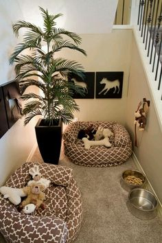 dog spaces in house ideas - dog spaces ; dog spaces in house ; dog spaces in house diy ; dog spaces in house bedrooms ; dog spaces in house ideas ; dog spaces under stairs Animal Room, Pet Corner, Cozy Corner, Corner Beds, Corner House, Corner Space, Dog Spaces, Small Spaces, Sweet Home