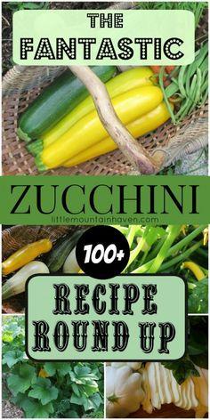 The Fantastic 100 Zucchini Recipe Round Up!