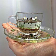 icu ~ 🔮🌙 inspo via Beth Freeman-Kane - Wildlife Miniaturist ✨ . ~ 🔮🌙 inspo via Beth Freeman-Kane - Wildlife Miniaturist ✨ . Cute Crafts, Diy And Crafts, Arts And Crafts, Resin Crafts, Resin Art, Miniature Crafts, Resin Jewelry, Artsy, Miniatures