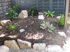 www.cpricelandscapes.com Landscape, Plants, Ideas, Scenery, Landscape Paintings, Planters, Corner Landscaping, Plant, Planting