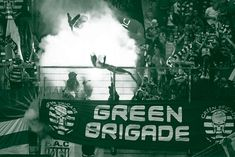 The Iconic Image of the Green Brigade – Celts Are Here Glasgow Green, Celtic Green, Celtic Fc, Best Fan, New Media, The Row, Pictures, Image, Fans