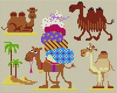 Camel patterns