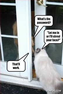 The teach Zone: Funny Animal Thoughts Picture with Caption