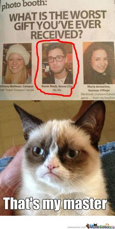 Grumpy Cat Has Finally Found Her Master Human Very Funny Picture ◬