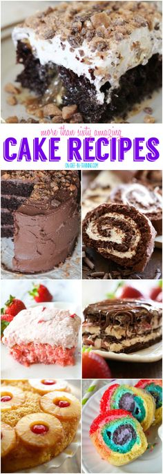 More Than 60 Amazing Cake Recipes - (chef-in-training)