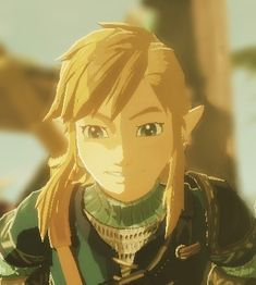 Legend Of Zelda Memes, Legend Of Zelda Breath, Hyrule Warriors Link, Swag Pictures, Link Botw, Zelda Video Games, Princesa Zelda, Botw Zelda, Avatar The Last Airbender Art