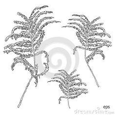 silhouettes-leaves-botanical-illustration-white-background-monochrome-floral-drawing-hand-drawn-vector-sketch-cosmetic-72928625.jpg (400×400)