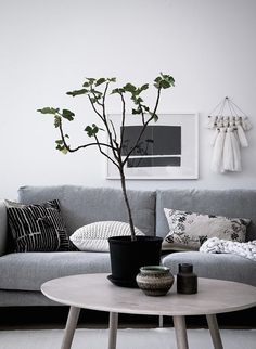 Scandinavian living room with grey sofa