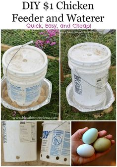 Chicken water and feeder buckets DIY