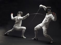 Fencing! A sport of speed and skill, just make sure you're playing with the correct blades beforehand :)