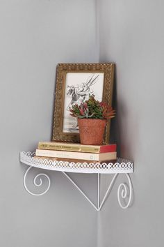 Swirl Corner Shelf >> Love this! I need a corner shelf... might have to get this.