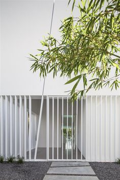 White gridded entryway and soft bamboo frames a very contemporary home | The white gallery house - Pitsou Kedem Architecture