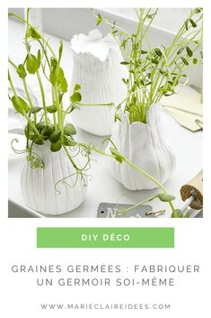 Faites germer vos graines dans ces jolis germoirs DIY ! Home And Deco, Marie Claire, Decoration, Glass Vase, Diy, Handmade, Natural Decorating, Garden Landscaping, Flowers