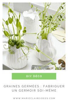 Faites germer vos graines dans ces jolis germoirs DIY ! Home And Deco, Marie Claire, Decoration, Glass Vase, Diy, Handmade, Natural Decorating, Garden Landscaping, Decor