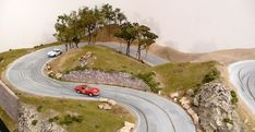 Slot Car Tracks, Slot Cars, Old Scales, Some Nights, Reference Images, Kind Words, Petunias, Small Towns, Scenery
