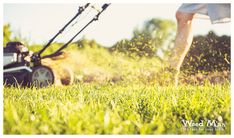 It's the First Day of Spring! Help prep your yard for a new lawn care season with tips from Weed Man. Drought Resistant Grass, Lawn Care Tips, Spring Landscape, Green Lawn, Landscaping Tips, Garden Planning, Lawn Mower, Gardening Tips, Outdoor Power Equipment