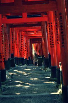 FunkyJapan #kyoto #japan #tori #FushimiInari