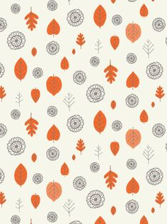 a view of the woods wallpaper; even the names of the colors -- coquelicot and mink on cream -- i love.