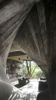 Welcome to my library...in the woods.