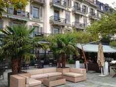 Men Who Like to Cook - David Latt - Advice for a child about to travel internationally - Lake Geneva region, Switzerland - Hotel des Trois Couronnes - palm trees on the outdoor patio Switzerland Hotels, Lake Geneva, Oh The Places You'll Go, Palm Trees, Have Fun, David, Restaurant, Cook, Spaces