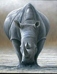 All images are the original artwork of nature artist and wildlife artist Dr. Jeremy Paul and are protected by international copyright laws. Wildlife Paintings, Wildlife Art, Animal Paintings, Animal Drawings, Rhino Tattoo, Animals And Pets, Cute Animals, Rhino Art, Art Graphique