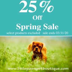 We not joking. We've extended our Spring Sale! We are grateful that we are able to give you and your pets some happiness and joy during these these stressful times. We thank you with all of our hearts for supporting our small online business. Pet Boutique, Spring Sale, How To Stay Healthy, Your Pet, Online Business, Jokes, Pet Products, Pets, Grateful