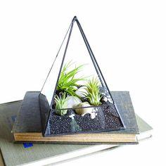 Air Plant Terrarium, Glass Pyramid Terrarium Planter. Terrarium Kit, Glass Terrarium. Geometric Terrarium,