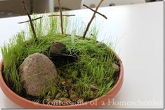 Mini Resurrection Garden Craft for Day 4 - have one started a week before so they can see grass growing.