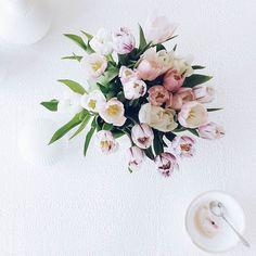 Wenn die Joghurt-Reste und das Schälchen des Mini-Mädchens zu den Tisch-Blümchen passen kann man mal ein Foto machen  . . Most beautiful tulips on my table... . . . #tulpen #tulips #ichliebetulpen #flower #flowers #flowerslovers #flowerstagram #instaflowers #flowersofinstagram #flowersmakemehappy #flowerstyling #flowerblogger #flowerpowerbloggers #instablooms #bloom #blooming #beautiful #feelfreefeed #nothingisordinary_ #nothingisordinary #stylingtheseasons #simpleandstill #seekthesimplicity…