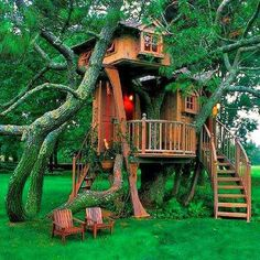 """Cool Tree House - """"The biggest adventure you can ever take is to live the life…"""