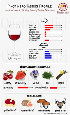 The Different Types of Wine Pinot Noir Wine, Pinot Noir Food Pairing, Red Wine Glasses, Wine Guide, Types Of Wine, Wine Wednesday, In Vino Veritas, Wine Cheese, Italian Wine